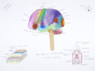 Kosmische Vernetzung (Gehirn)