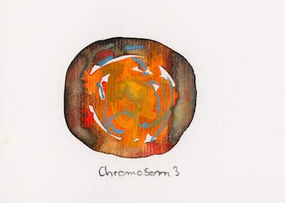 Chromosom 3